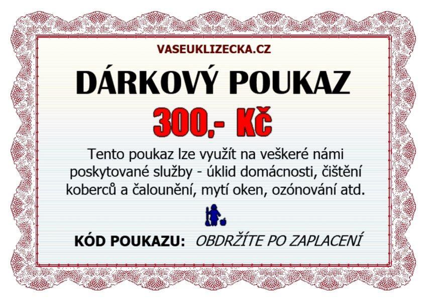 Dárkový poukaz na 300,- Kč.